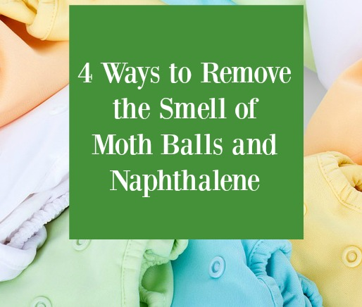 4 Ways To Remove The Smell Of Moth